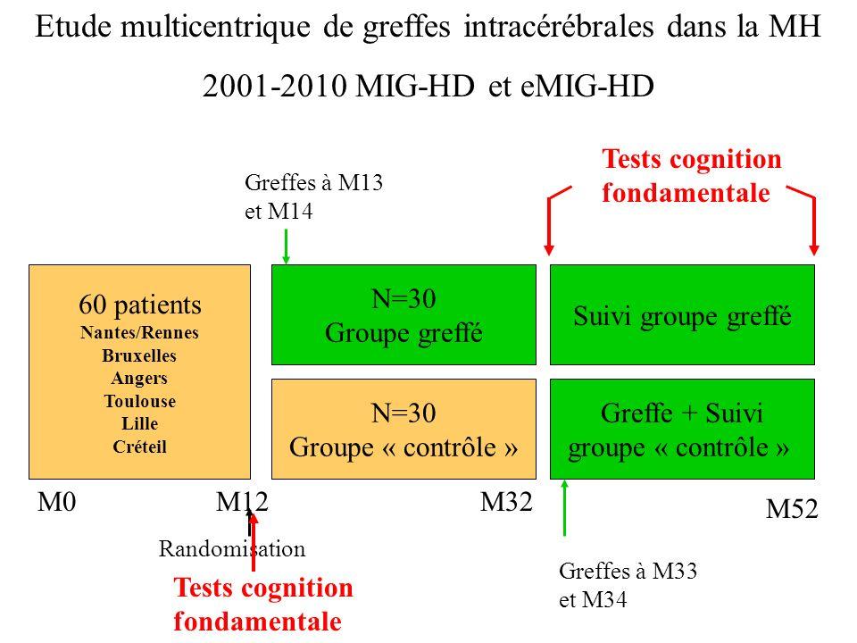 60 patients Nantes/Rennes Bruxelles Angers Toulouse Lille Créteil M0M12 Randomisation N=30 Groupe greffé N=30 Groupe « contrôle » Greffes à M13 et M14 M32 Greffe + Suivi groupe « contrôle » Suivi groupe greffé Greffes à M33 et M34 Etude multicentrique de greffes intracérébrales dans la MH 2001-2010 MIG-HD et eMIG-HD M52 Tests cognition fondamentale