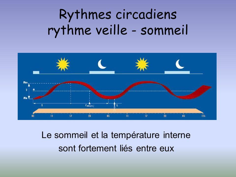 Rythmes circadiens rythme veille - sommeil Le sommeil et la température interne sont fortement liés entre eux