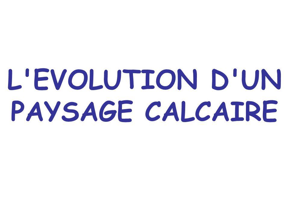 L'EVOLUTION D'UN PAYSAGE CALCAIRE
