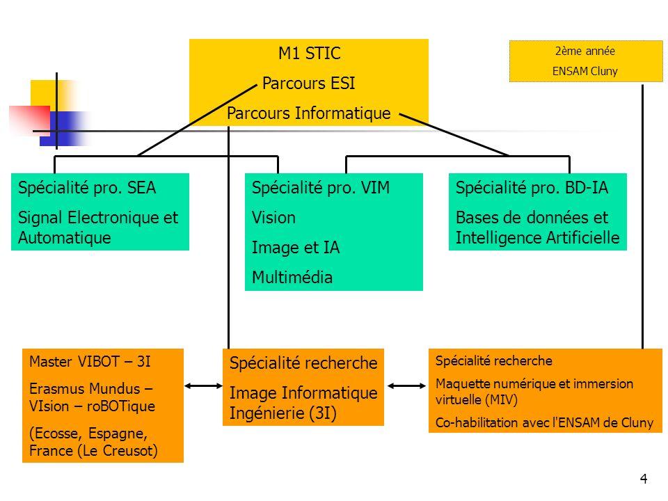 4 M1 STIC Parcours ESI Parcours Informatique Spécialité pro.