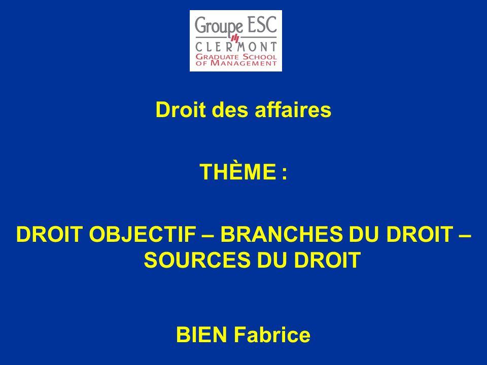 Droit des affaires THÈME : DROIT OBJECTIF – BRANCHES DU DROIT – SOURCES DU DROIT BIEN Fabrice