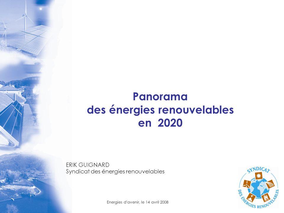 Energies d'avenir, le 14 avril 2008 Panorama des énergies renouvelables en 2020 ERIK GUIGNARD Syndicat des énergies renouvelables