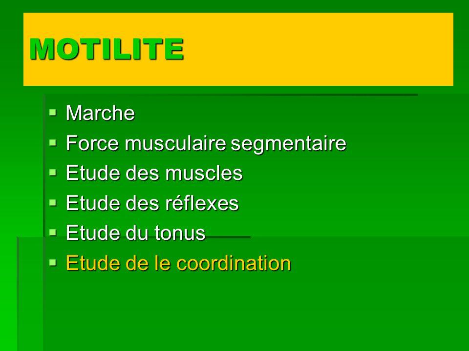 MOTILITE Marche Marche Force musculaire segmentaire Force musculaire segmentaire Etude des muscles Etude des muscles Etude des réflexes Etude des réfl