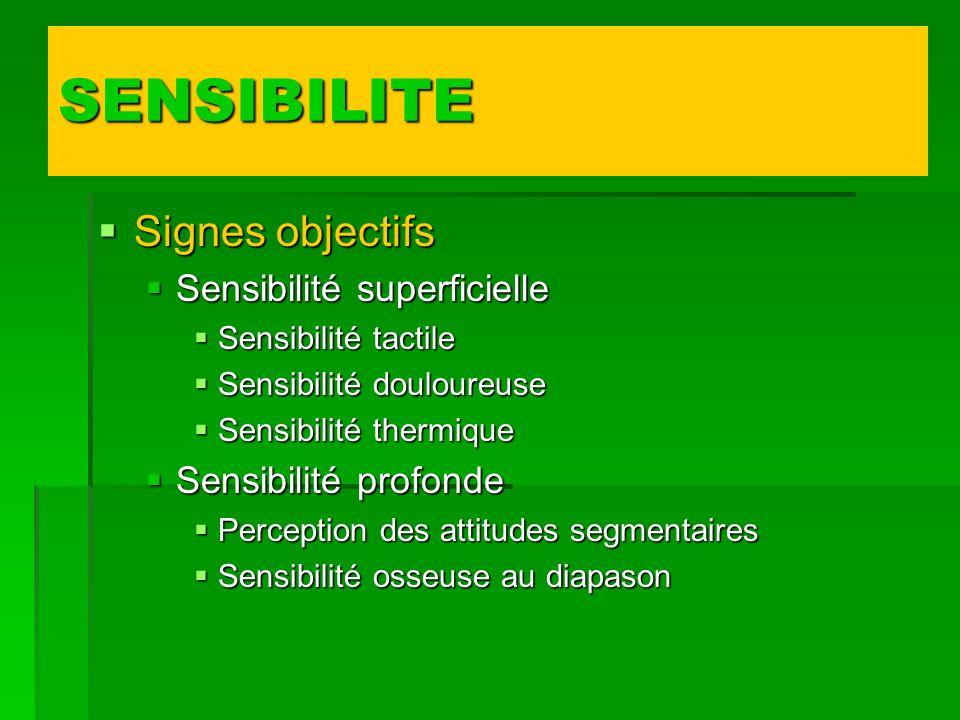 Signes objectifs Signes objectifs Sensibilité superficielle Sensibilité superficielle Sensibilité tactile Sensibilité tactile Sensibilité douloureuse