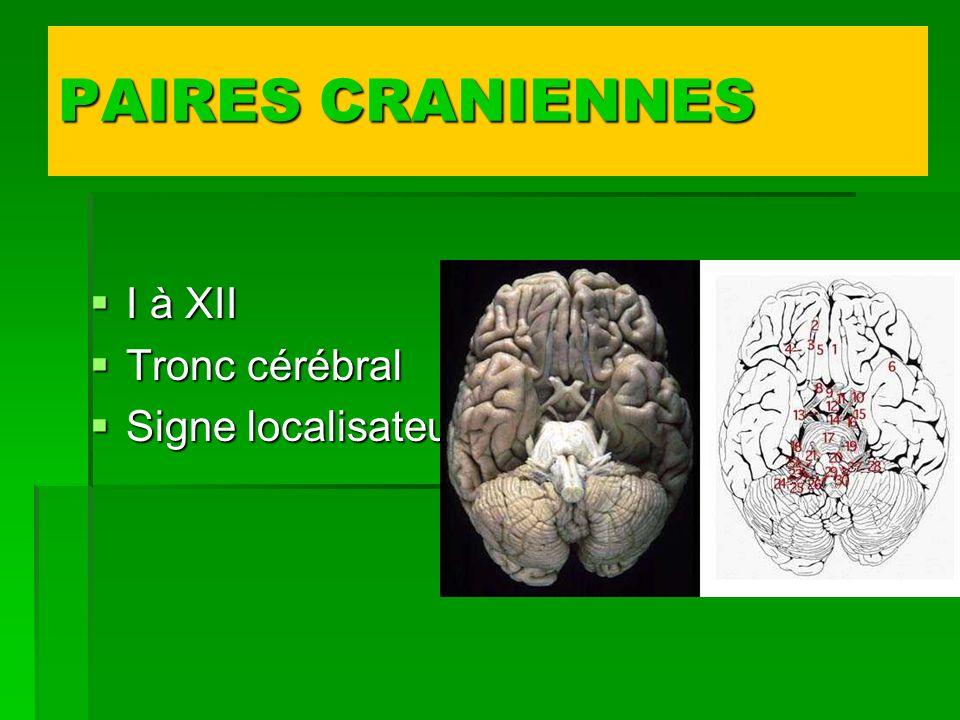 PAIRES CRANIENNES I à XII I à XII Tronc cérébral Tronc cérébral Signe localisateur Signe localisateur
