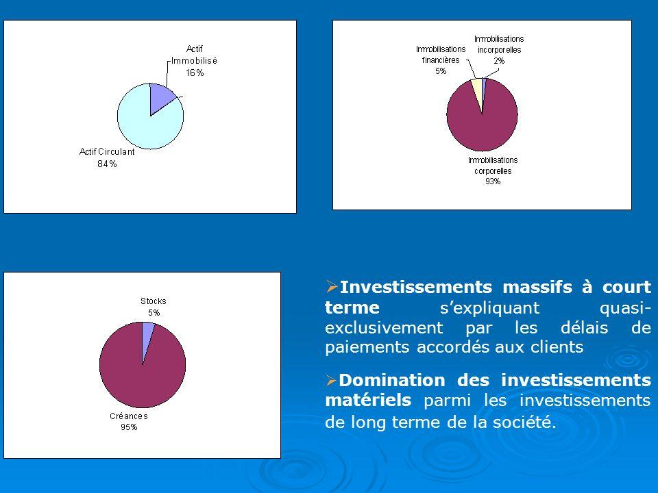 Investissements massifs à court terme sexpliquant quasi- exclusivement par les délais de paiements accordés aux clients Domination des investissements
