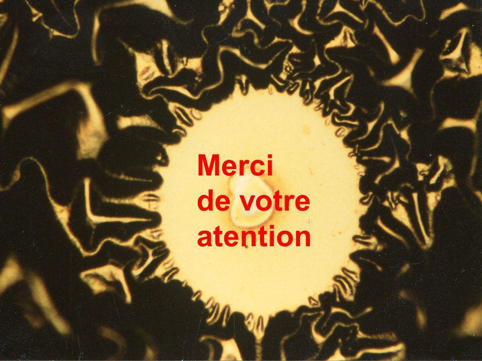 17 Journée Nouveaux entrants CNRS-INSIS, Paris, le 22 mai 2012, Témoignage Pere Roca i Cabarrocas Merci de votre atention