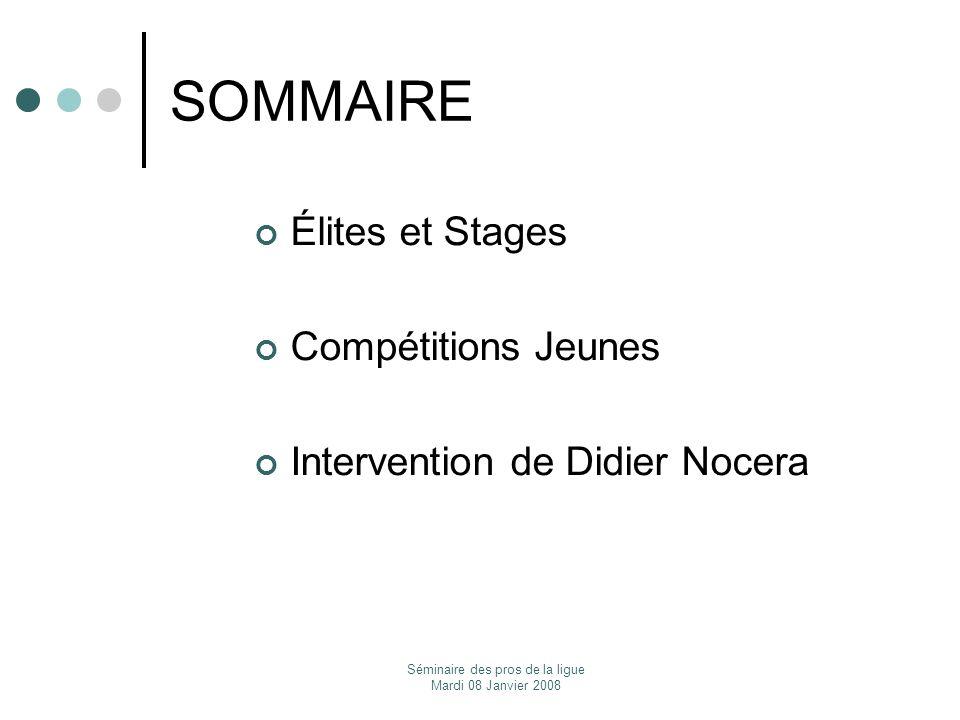 Séminaire des pros de la ligue Mardi 08 Janvier 2008 SOMMAIRE Élites et Stages Compétitions Jeunes Intervention de Didier Nocera