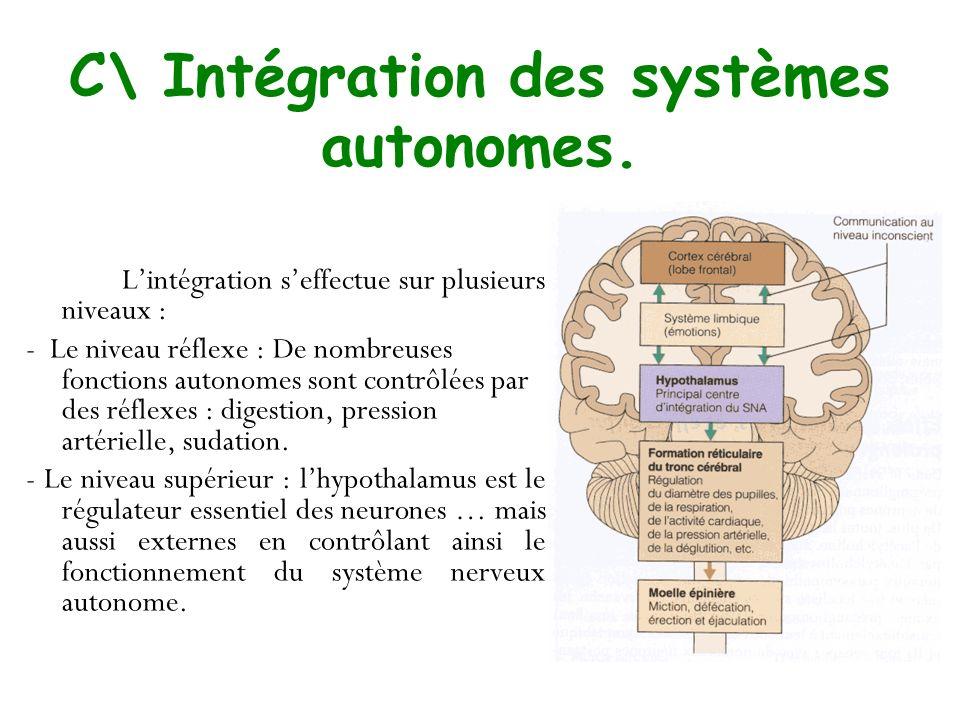 C\ Intégration des systèmes autonomes. Lintégration seffectue sur plusieurs niveaux : - Le niveau réflexe : De nombreuses fonctions autonomes sont con