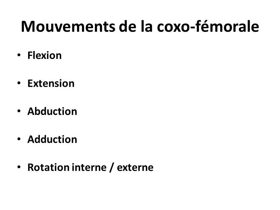Hyperextension Flexion Abduction Adduction
