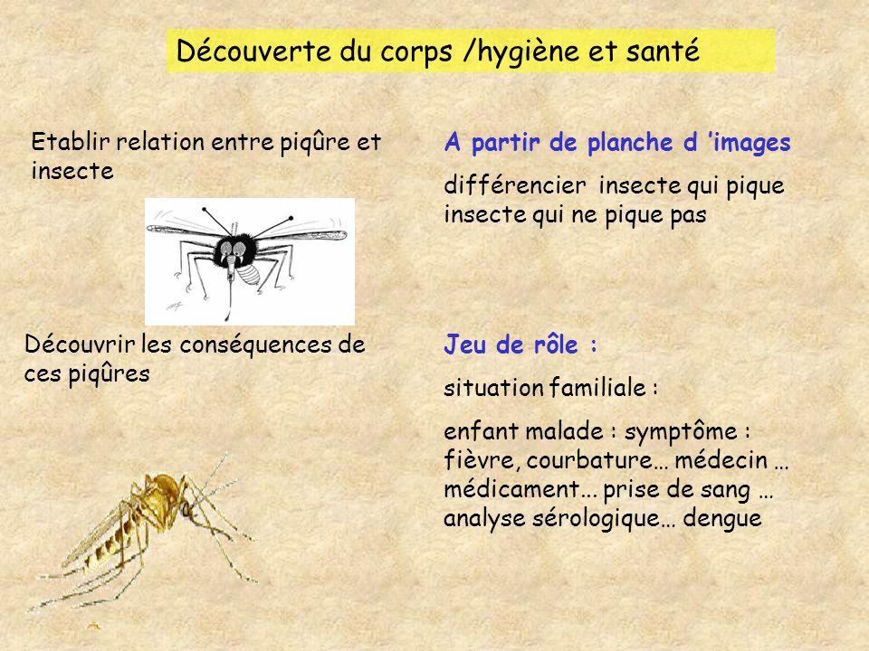 Découverte du corps /hygiène et santé Etablir relation entre piqûre et insecte A partir de planche d images différencier insecte qui pique insecte qui