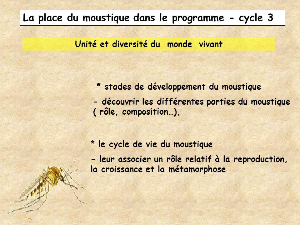La place du moustique dans le programme - cycle 3 Unité et diversité du monde vivant * stades de développement du moustique - découvrir les différente