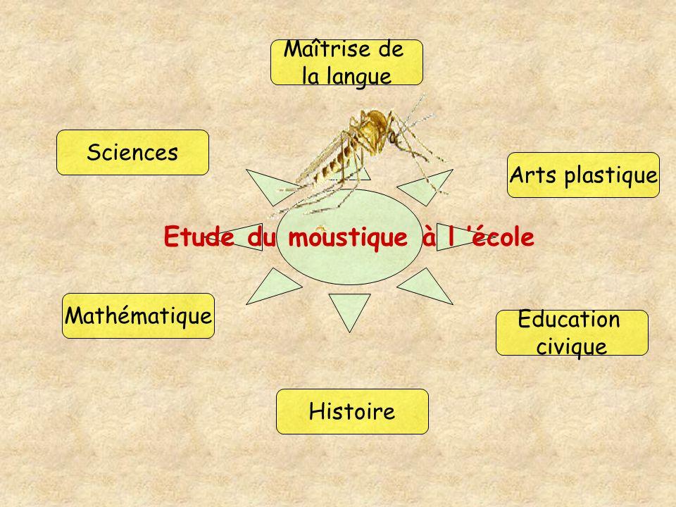 Sciences Mathématique Histoire Maîtrise de la langue Arts plastique Education civique Etude du moustique à l école