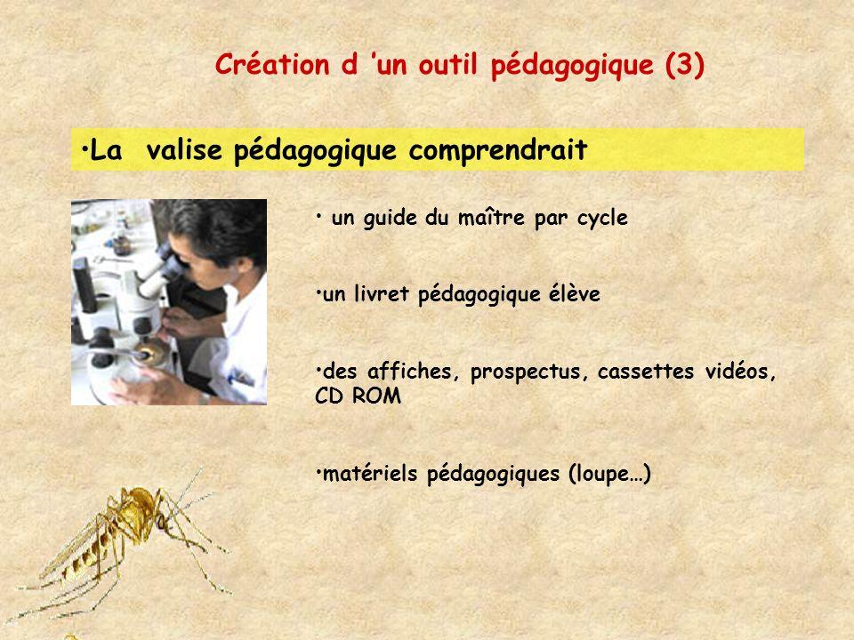Création d un outil pédagogique (4) Le guide du maître se composerait des activités principales faisant référence au livret de l élève des activités spécifiques qui apporteront des informations complémentaires sur les moustiques, sur la dengue, sur le paludisme, sur le chikungnya