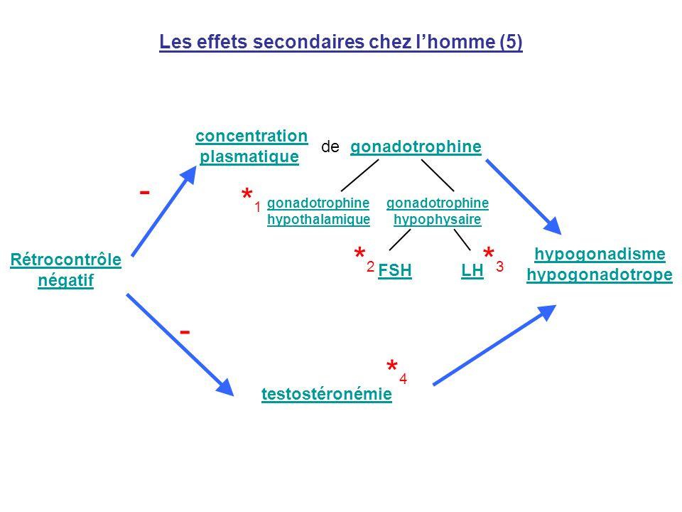 Les effets secondaires chez lhomme (5) Rétrocontrôle négatif testostéronémie concentration plasmatique gonadotrophine gonadotrophine hypothalamique go