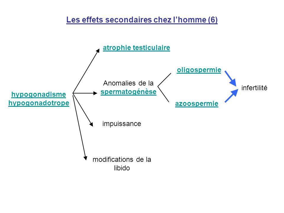 Les effets secondaires chez lhomme (6) hypogonadisme hypogonadotrope atrophie testiculaire Anomalies de la spermatogénèse oligospermie azoospermie imp