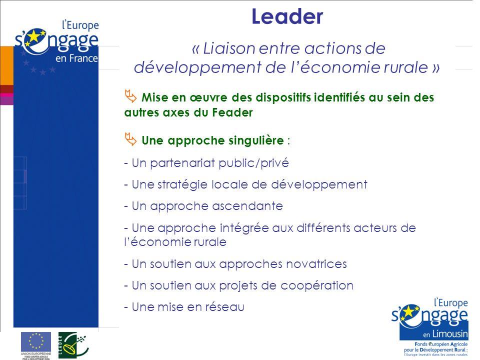Leader « Liaison entre actions de développement de léconomie rurale » Mise en œuvre des dispositifs identifiés au sein des autres axes du Feader Une approche singulière : - Un partenariat public/privé - Une stratégie locale de développement - Un approche ascendante - Une approche intégrée aux différents acteurs de léconomie rurale - Un soutien aux approches novatrices - Un soutien aux projets de coopération - Une mise en réseau