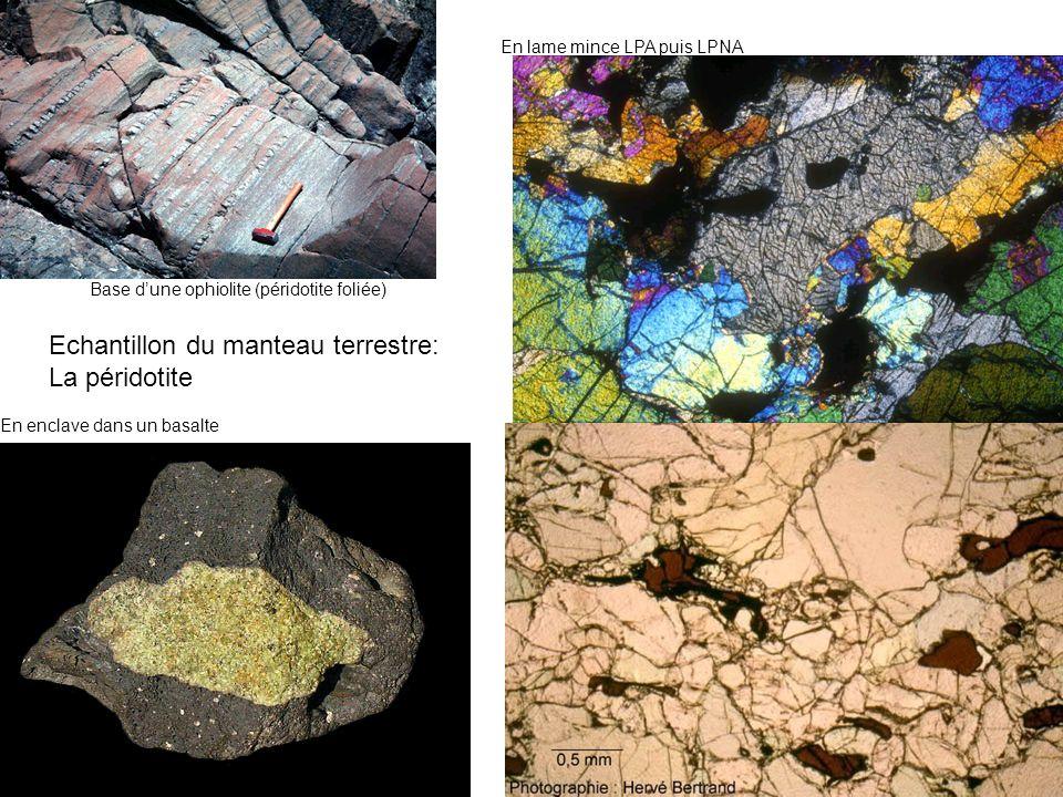 Echantillon du manteau terrestre: La péridotite En enclave dans un basalte Base dune ophiolite (péridotite foliée) En lame mince LPA puis LPNA