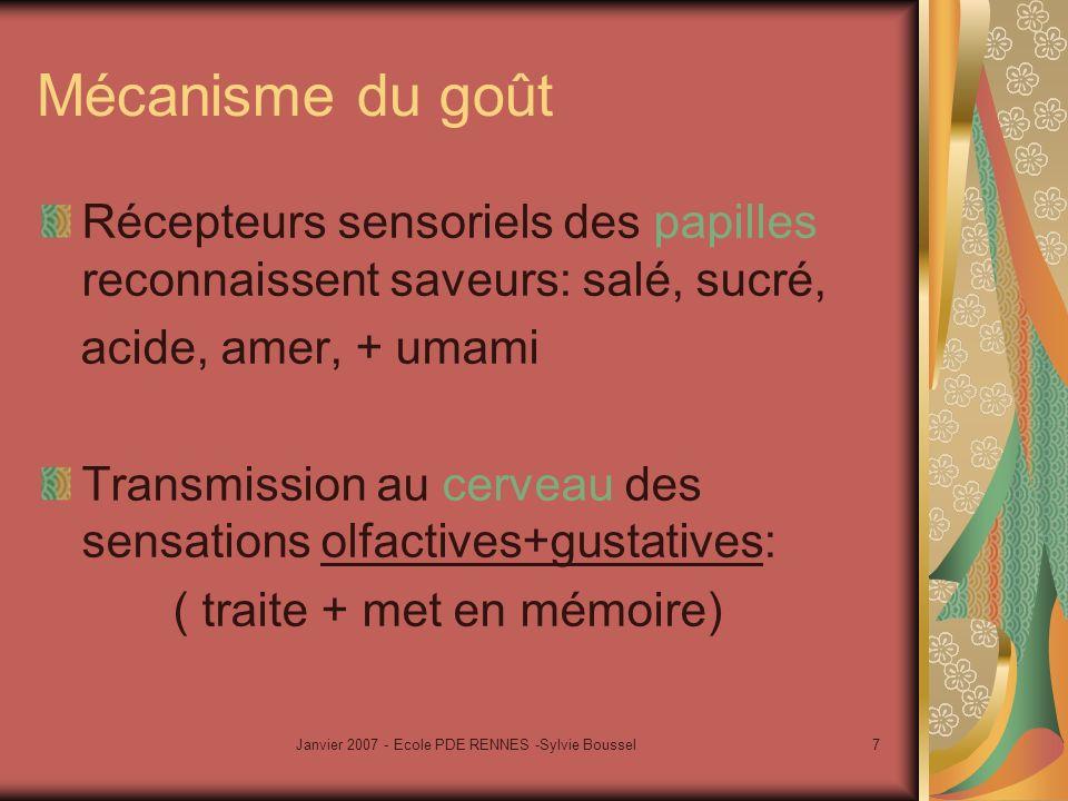 Janvier 2007 - Ecole PDE RENNES -Sylvie Boussel7 Mécanisme du goût Récepteurs sensoriels des papilles reconnaissent saveurs: salé, sucré, acide, amer,