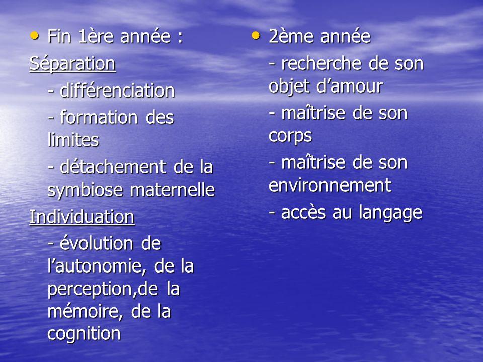 Fin 1ère année : Fin 1ère année :Séparation - différenciation - formation des limites - détachement de la symbiose maternelle Individuation - évolutio