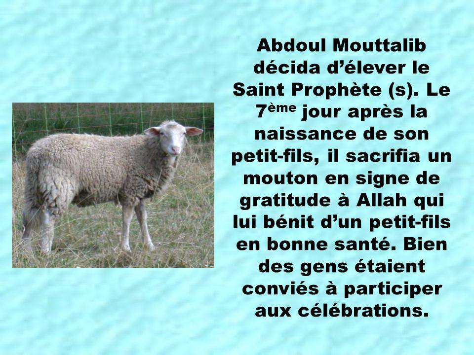 Abdoul Mouttalib décida délever le Saint Prophète (s). Le 7 ème jour après la naissance de son petit-fils, il sacrifia un mouton en signe de gratitude