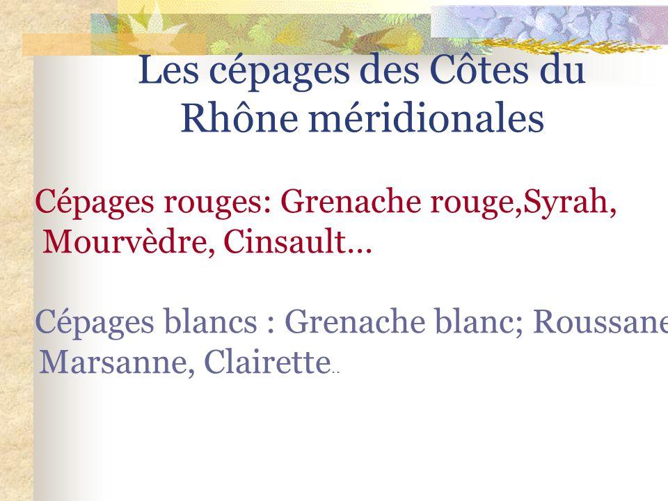 Côtes du Rhône Méridionales Vin doux naturel. Cépage de grenache rouge ou blanc Blanc, rougeAOC Rasteau Vin doux naturel. Cépage muscat blanc à petits