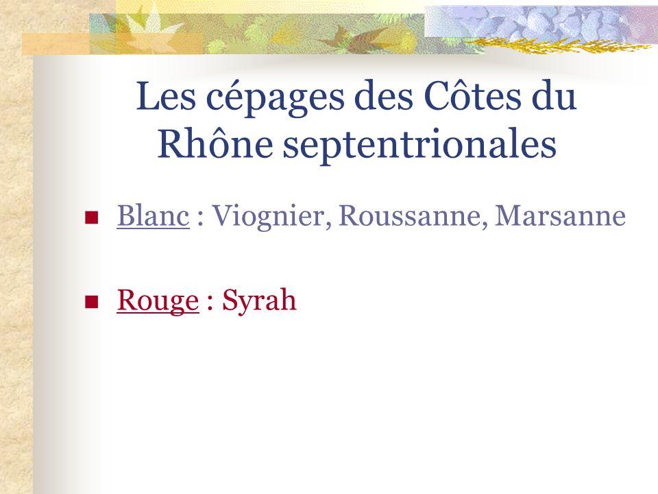 Les Côtes du Rhône septentrionales Le vignoble des Côtes du Rhône septentrionales est situé au nord de la Vallée du Rhône de Vienne, au sud de Lyon ju