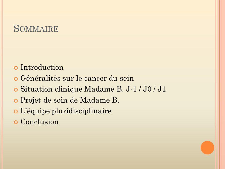 S OMMAIRE Introduction Généralités sur le cancer du sein Situation clinique Madame B. J-1 / J0 / J1 Projet de soin de Madame B. Léquipe pluridisciplin