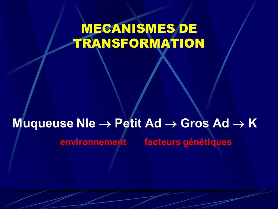 MECANISMES DE TRANSFORMATION Muqueuse Nle Petit Ad Gros Ad K environnement facteurs génétiques