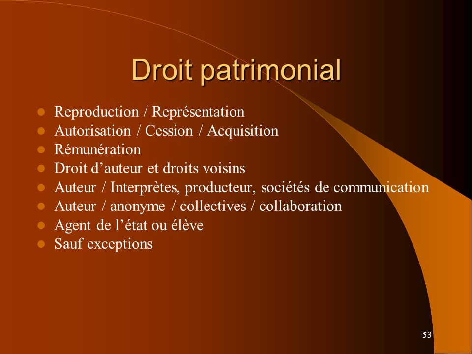 53 Droit patrimonial Reproduction / Représentation Autorisation / Cession / Acquisition Rémunération Droit dauteur et droits voisins Auteur / Interprè