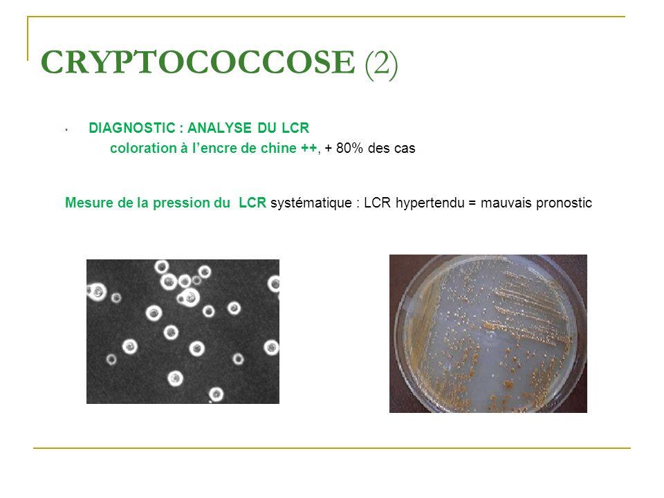 CRYPTOCOCCOSE (2) DIAGNOSTIC : ANALYSE DU LCR coloration à lencre de chine ++, + 80% des cas Mesure de la pression du LCR systématique : LCR hypertend