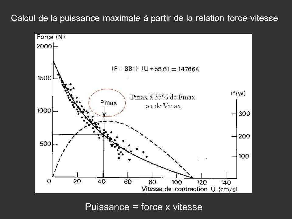 Calcul de la puissance maximale à partir de la relation force-vitesse Puissance = force x vitesse Pmax à 35% de Fmax ou de Vmax