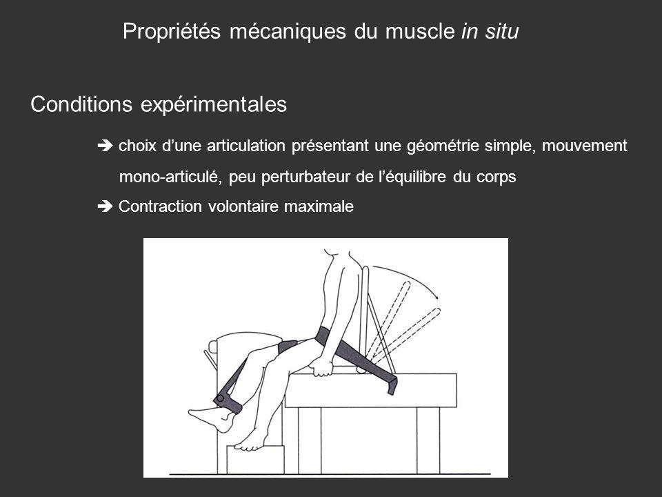 Propriétés mécaniques du muscle in situ Conditions expérimentales choix dune articulation présentant une géométrie simple, mouvement mono-articulé, pe