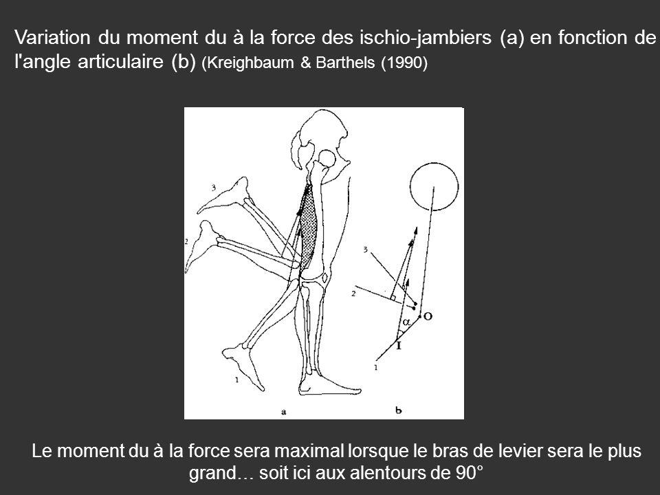 Variation du moment du à la force des ischio-jambiers (a) en fonction de l'angle articulaire (b) (Kreighbaum & Barthels (1990) Le moment du à la force