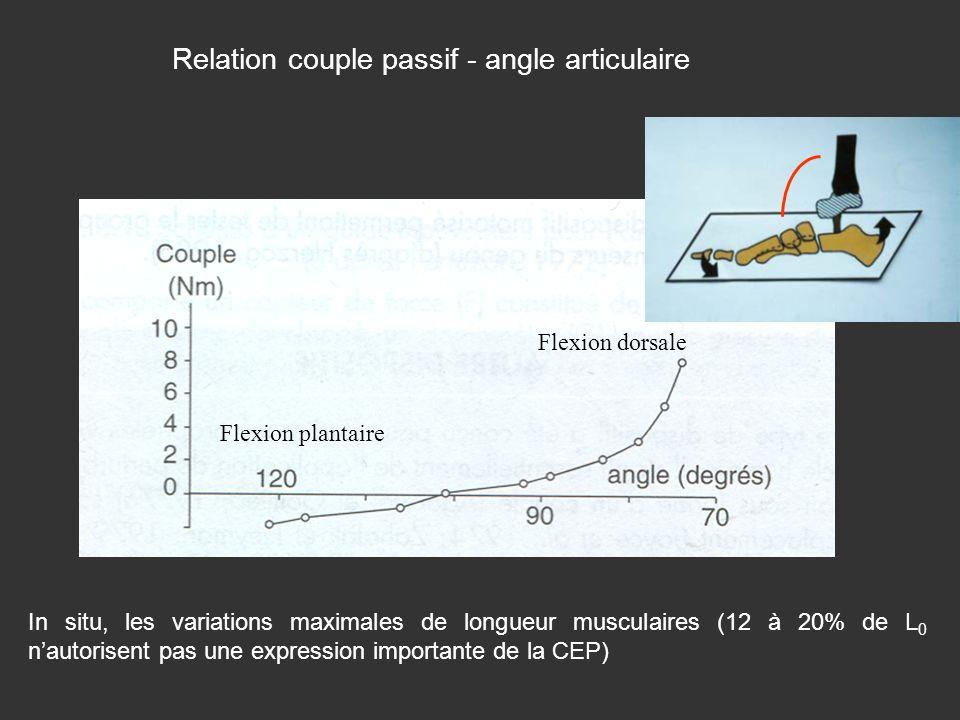 Relation couple passif - angle articulaire In situ, les variations maximales de longueur musculaires (12 à 20% de L 0 nautorisent pas une expression i