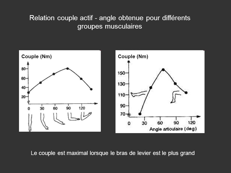 Relation couple actif - angle obtenue pour différents groupes musculaires Couple (Nm) Le couple est maximal lorsque le bras de levier est le plus gran