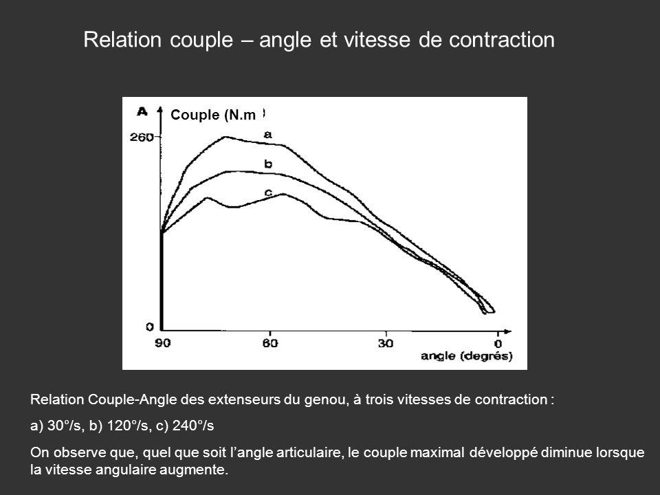 Relation Couple-Angle des extenseurs du genou, à trois vitesses de contraction : a) 30°/s, b) 120°/s, c) 240°/s On observe que, quel que soit langle a