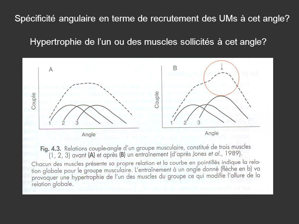 Hypertrophie de lun ou des muscles sollicités à cet angle? Spécificité angulaire en terme de recrutement des UMs à cet angle?