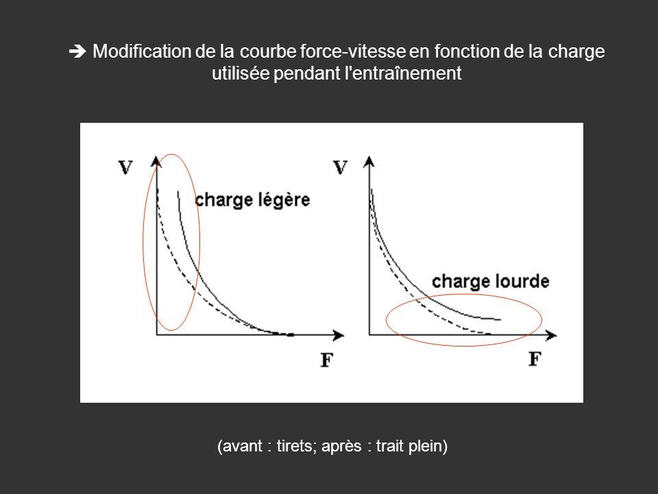 Modification de la courbe force-vitesse en fonction de la charge utilisée pendant l'entraînement (avant : tirets; après : trait plein)