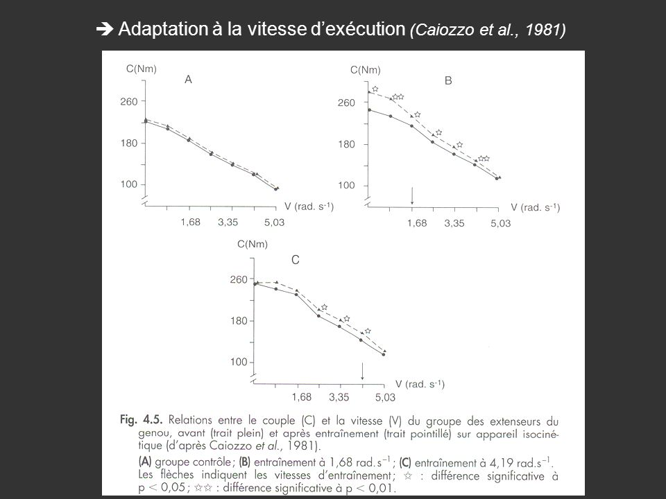 Adaptation à la vitesse dexécution (Caiozzo et al., 1981)