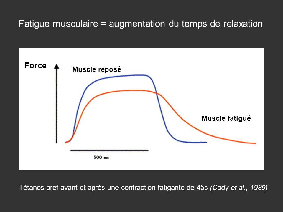 Muscle fatigué Muscle reposé Force Fatigue musculaire = augmentation du temps de relaxation Tétanos bref avant et après une contraction fatigante de 4