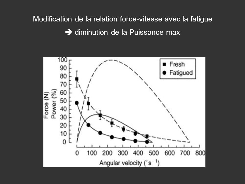 Modification de la relation force-vitesse avec la fatigue diminution de la Puissance max