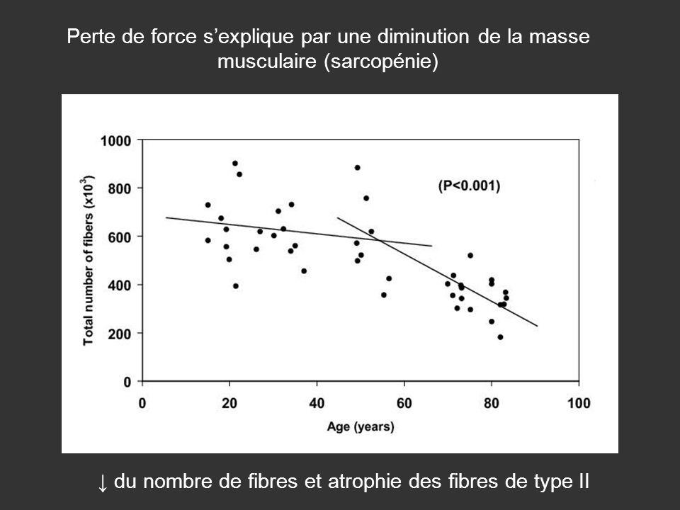 Perte de force sexplique par une diminution de la masse musculaire (sarcopénie) du nombre de fibres et atrophie des fibres de type II