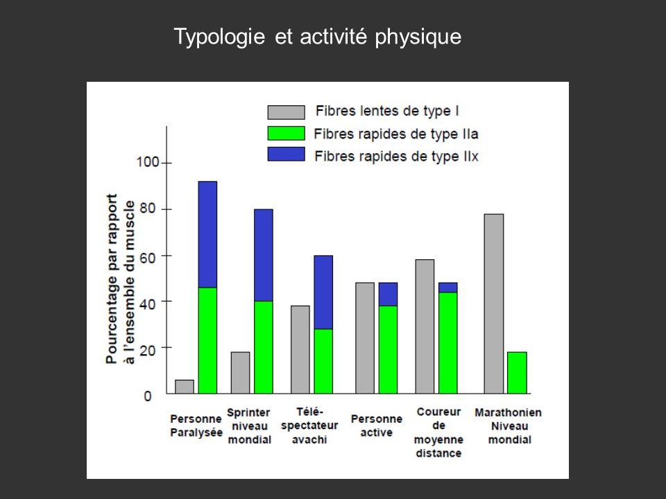 Typologie et activité physique