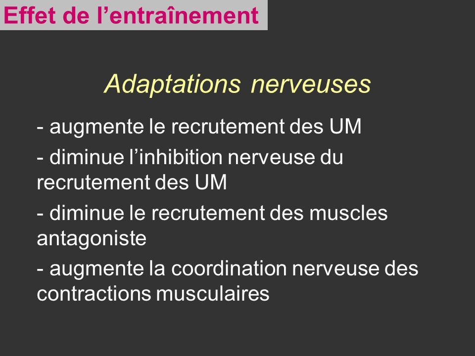 Adaptations nerveuses - augmente le recrutement des UM - diminue linhibition nerveuse du recrutement des UM - diminue le recrutement des muscles antag