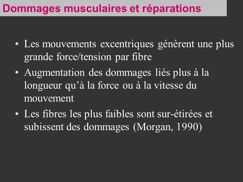 Les mouvements excentriques génèrent une plus grande force/tension par fibre Augmentation des dommages liés plus à la longueur quà la force ou à la vi