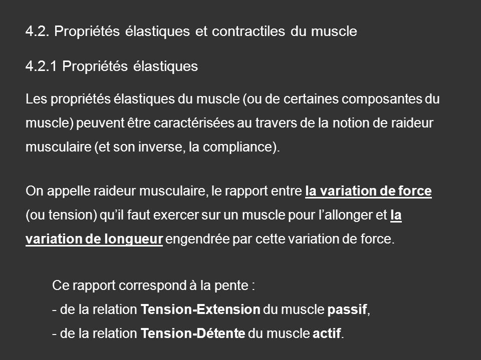 4.2. Propriétés élastiques et contractiles du muscle 4.2.1 Propriétés élastiques Les propriétés élastiques du muscle (ou de certaines composantes du m