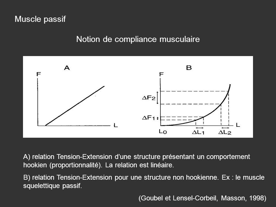 A) relation Tension-Extension dune structure présentant un comportement hookien (proportionnalité). La relation est linéaire. B) relation Tension-Exte