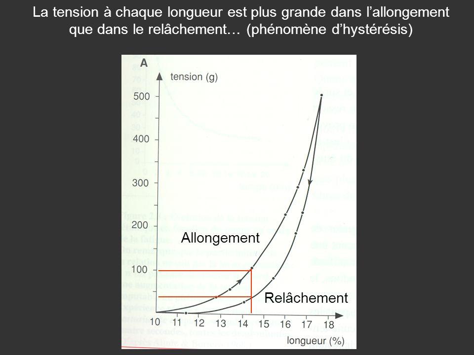 Allongement Relâchement La tension à chaque longueur est plus grande dans lallongement que dans le relâchement… (phénomène dhystérésis)