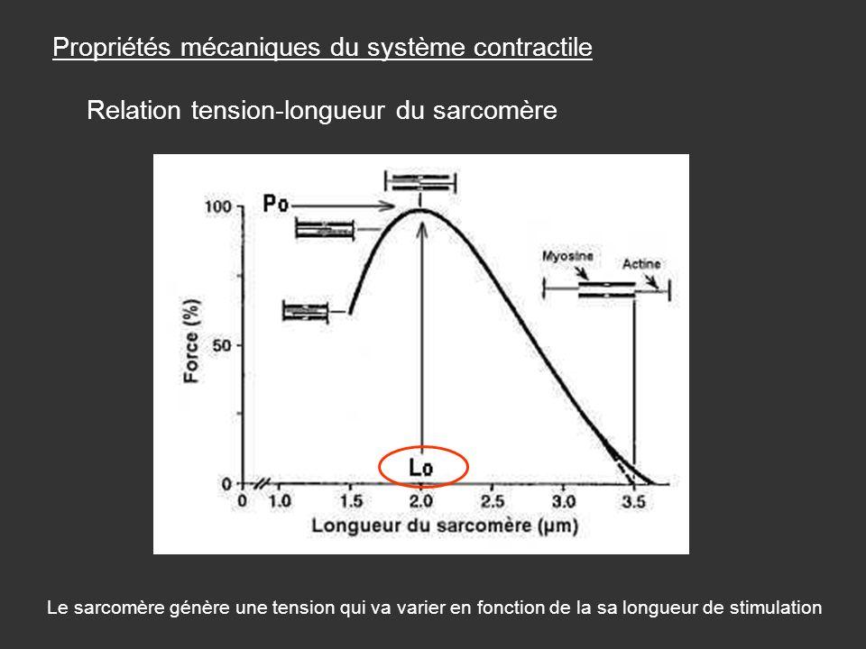 Propriétés mécaniques du système contractile Relation tension-longueur du sarcomère Le sarcomère génère une tension qui va varier en fonction de la sa